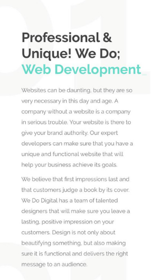 Mobile Friendly professional and unique websites